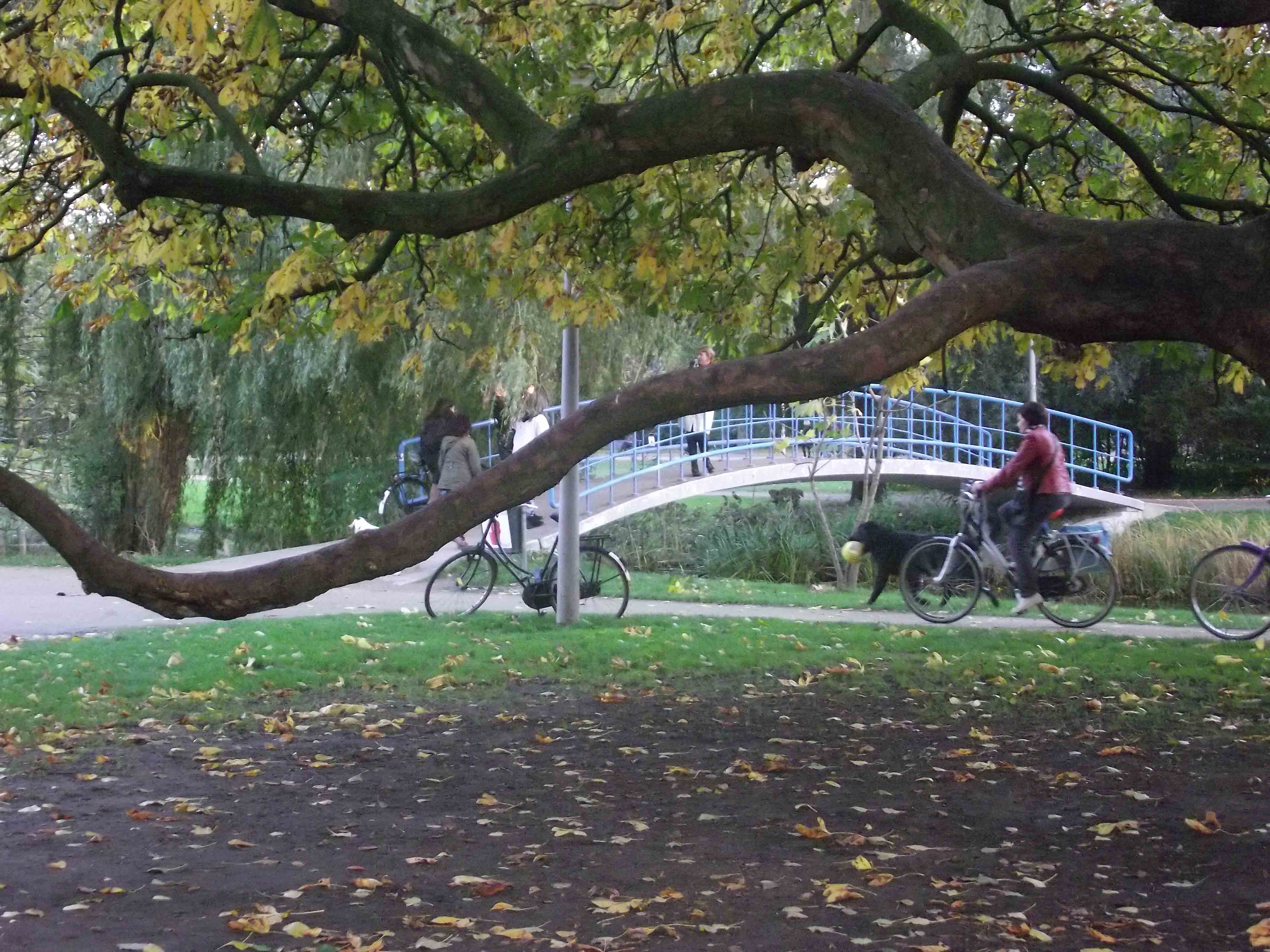 Parque Vondelpark em Amsterdam