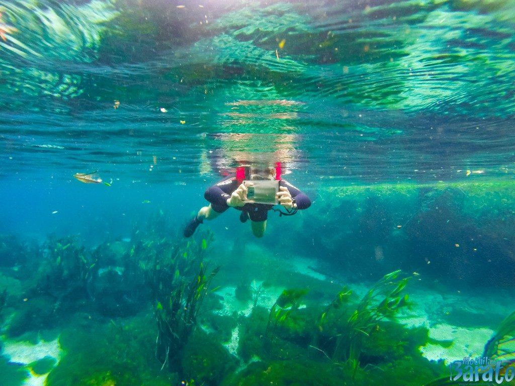 Flutuação Barra do Sucuri em Bonito