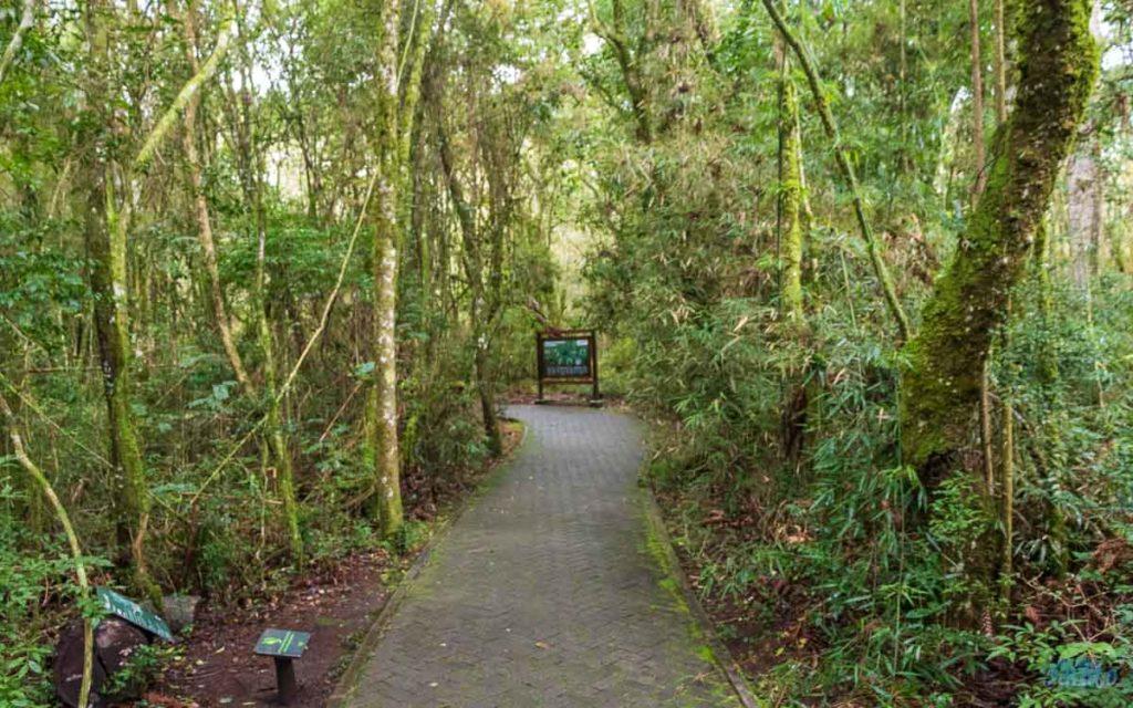 trilha Parques da Serra