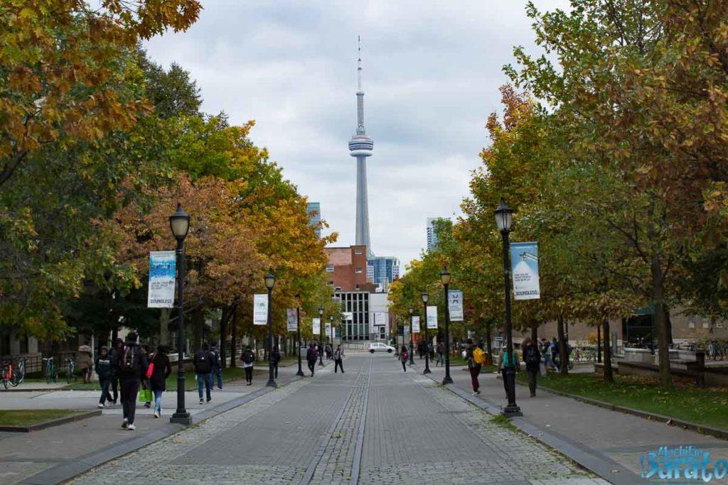 Atrações Imperdíveis de Toronto