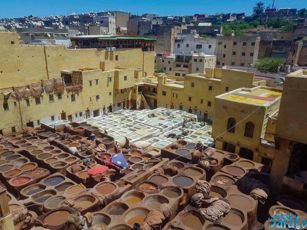 curtume de Fez no Marrocos