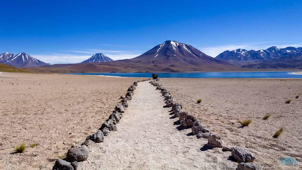 Lagunas Altiplanicas no Atacama