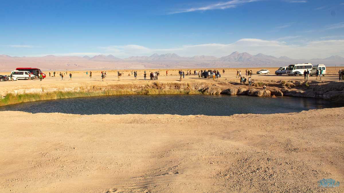 Ojos del Salar Atacama