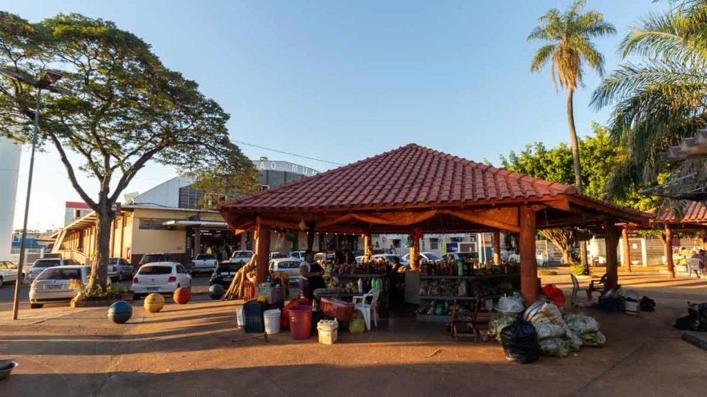 Feira Indígena em Campo Grande