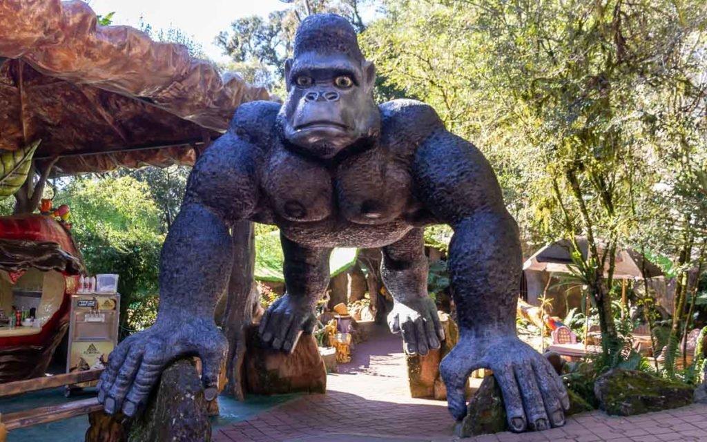 Gorila no Parque Terra Mágica Florybal