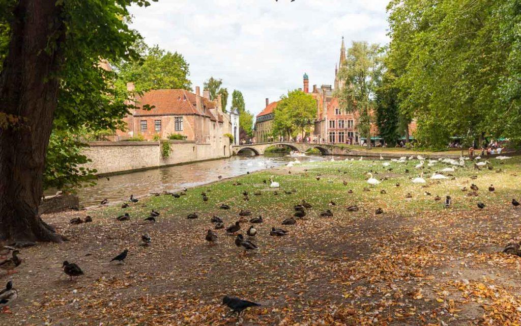 Parque Minnewater em Bruges