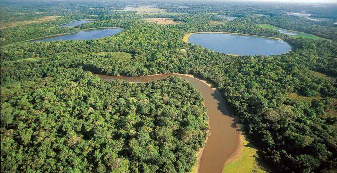 Pantanal sul-mato-grossense