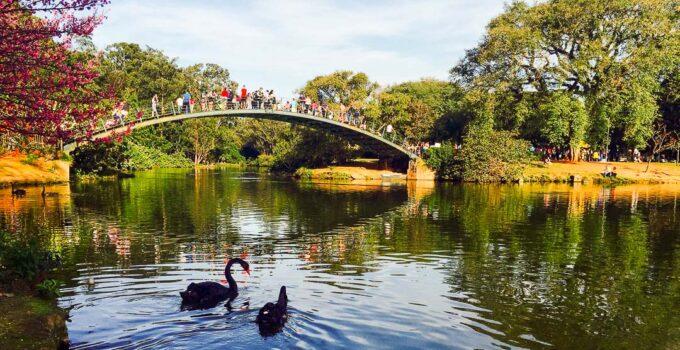 6 Parques Imperdíveis de São Paulo
